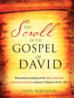 The Scroll of the Gospel of David cover